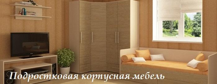 Подростковая корпусная мебель